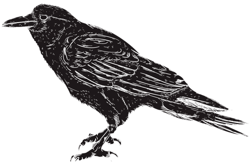 crow flipped.png